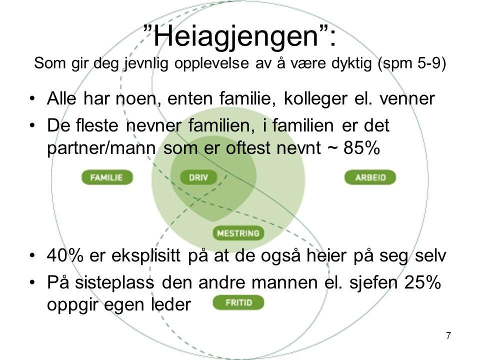 7 Heiagjengen : Som gir deg jevnlig opplevelse av å være dyktig (spm 5-9) •Alle har noen, enten familie, kolleger el.