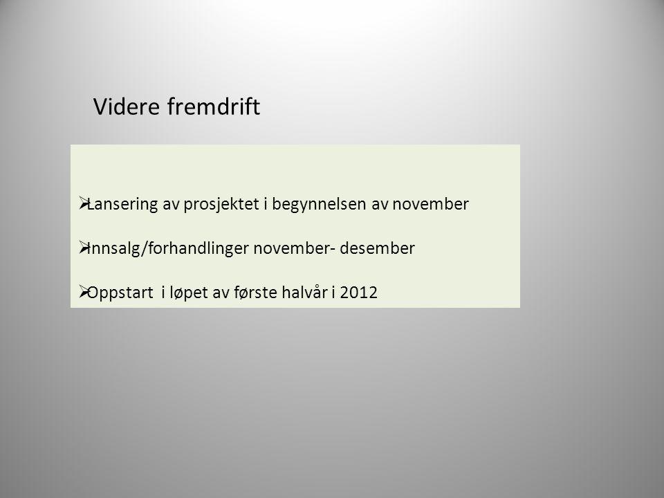Videre fremdrift  Lansering av prosjektet i begynnelsen av november  Innsalg/forhandlinger november- desember  Oppstart i løpet av første halvår i