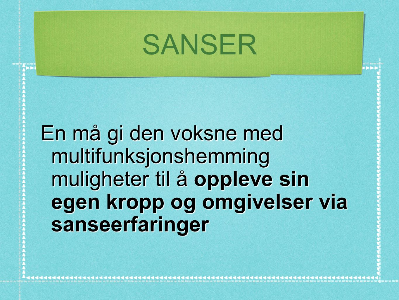 SANSER En må gi den voksne med multifunksjonshemming muligheter til å oppleve sin egen kropp og omgivelser via sanseerfaringer