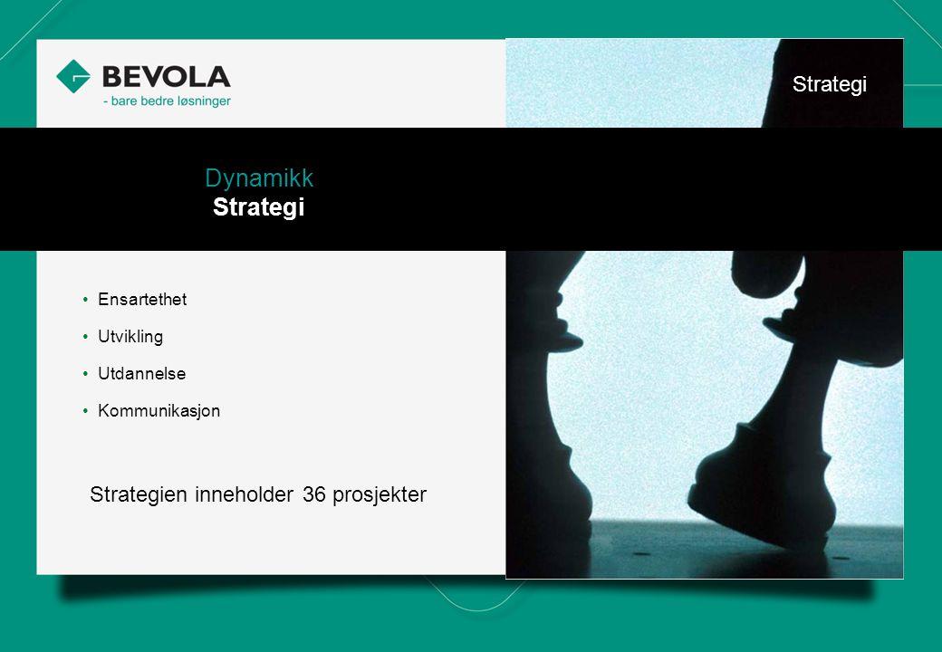 History • Ensartethet • Utvikling • Utdannelse • Kommunikasjon Dynamikk Strategi Strategien inneholder 36 prosjekter