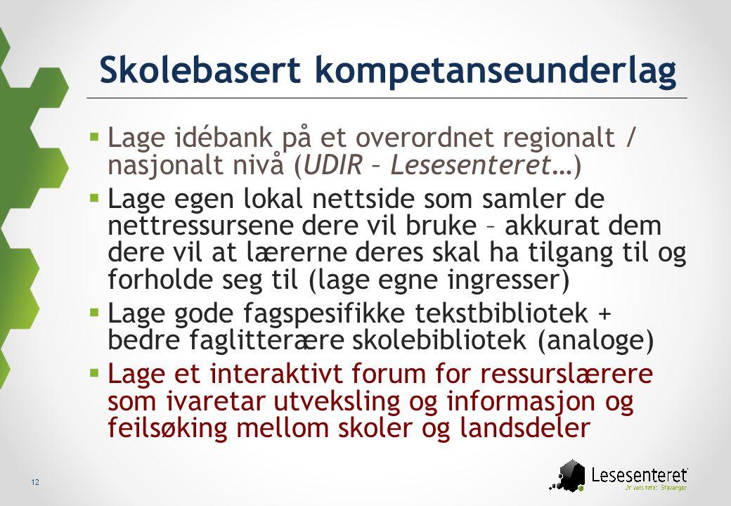 12 Skolebasert kompetanseunderlag  Lage idébank på et overordnet regionalt / nasjonalt nivå (UDIR – Lesesenteret…)  Lage egen lokal nettside som sam