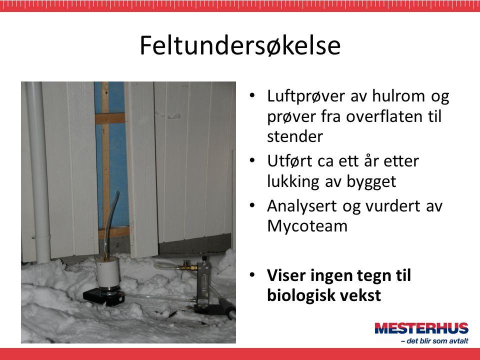 Feltundersøkelse • Luftprøver av hulrom og prøver fra overflaten til stender • Utført ca ett år etter lukking av bygget • Analysert og vurdert av Myco