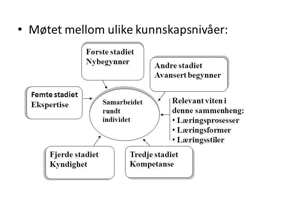 At stå i det åbne av Finn Thorbjørn Hansen (H.Reitzels forl.