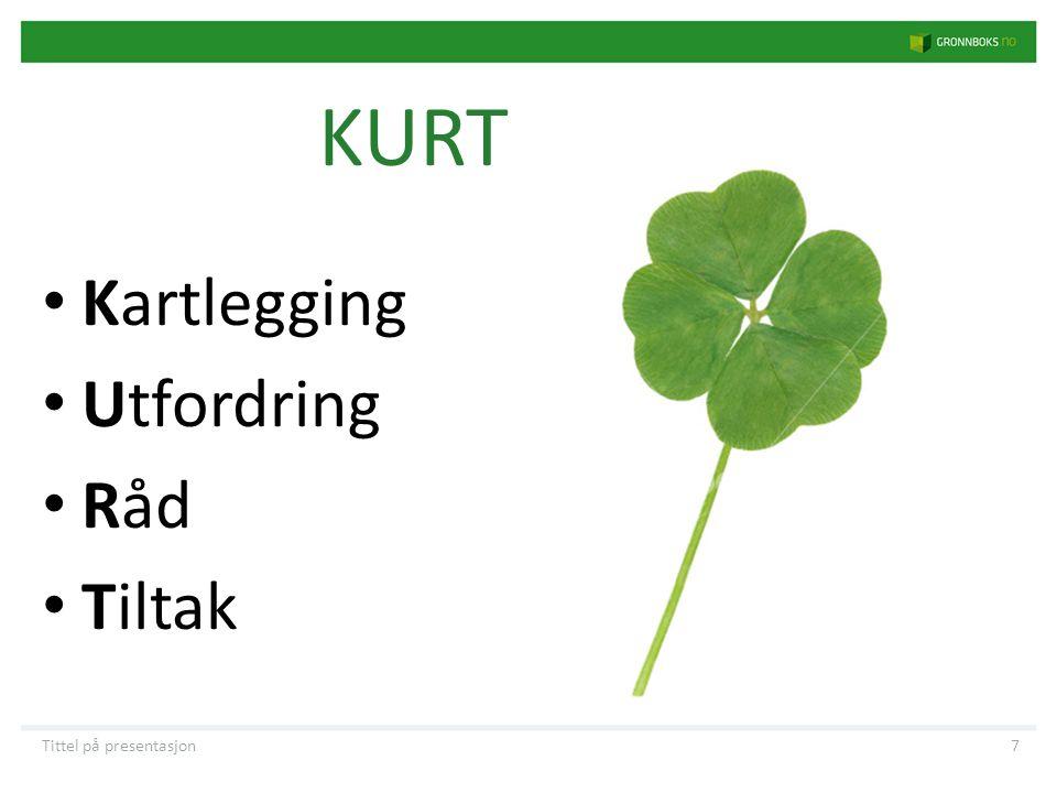 KURT • Kartlegging • Utfordring • Råd • Tiltak Tittel på presentasjon7