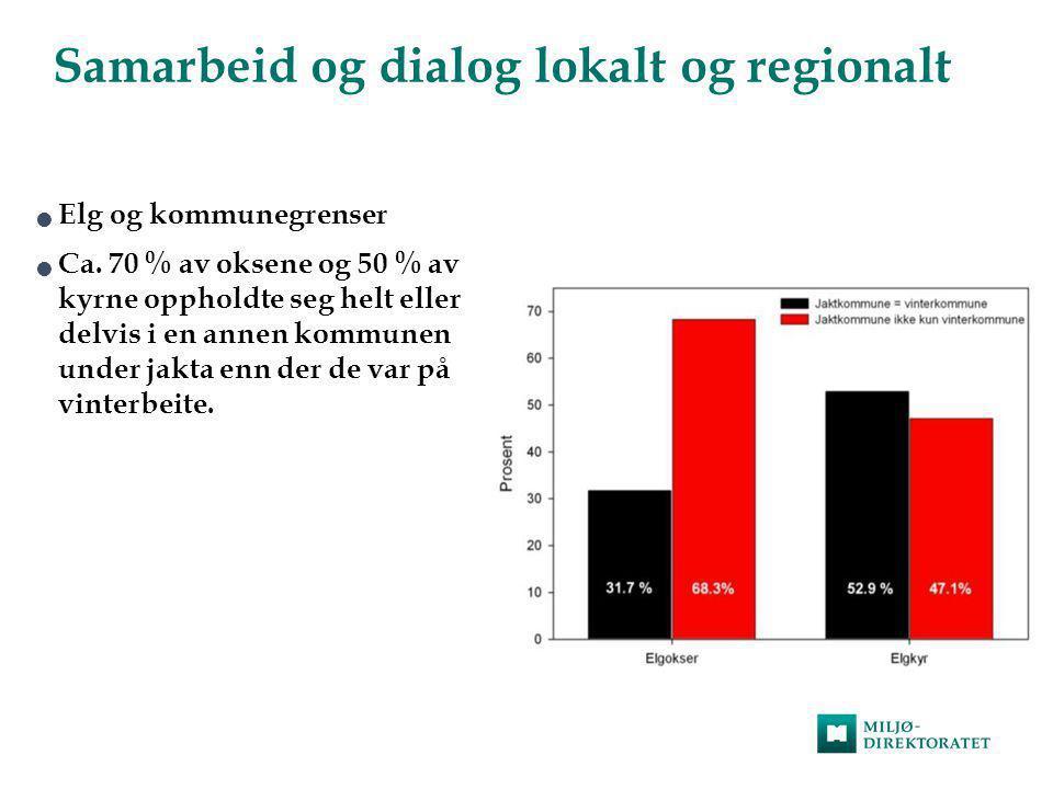 Samarbeid og dialog lokalt og regionalt  Elg og kommunegrenser  Ca. 70 % av oksene og 50 % av kyrne oppholdte seg helt eller delvis i en annen kommu