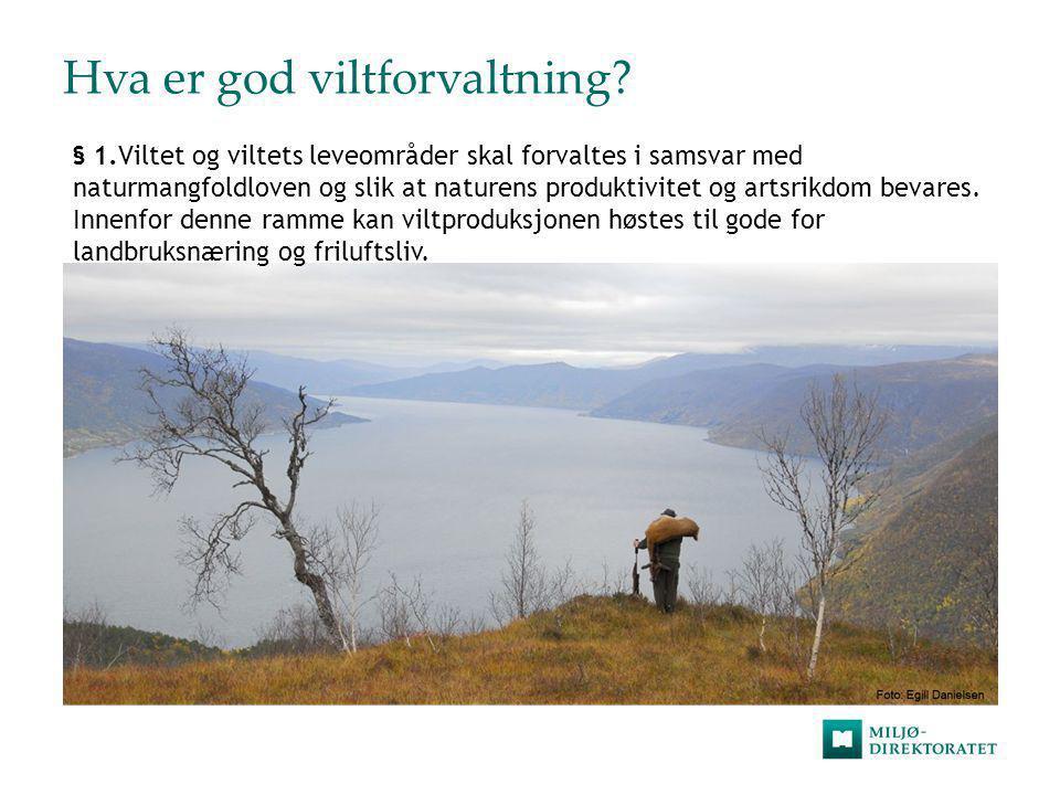 Hva er god viltforvaltning? § 1.Viltet og viltets leveområder skal forvaltes i samsvar med naturmangfoldloven og slik at naturens produktivitet og art