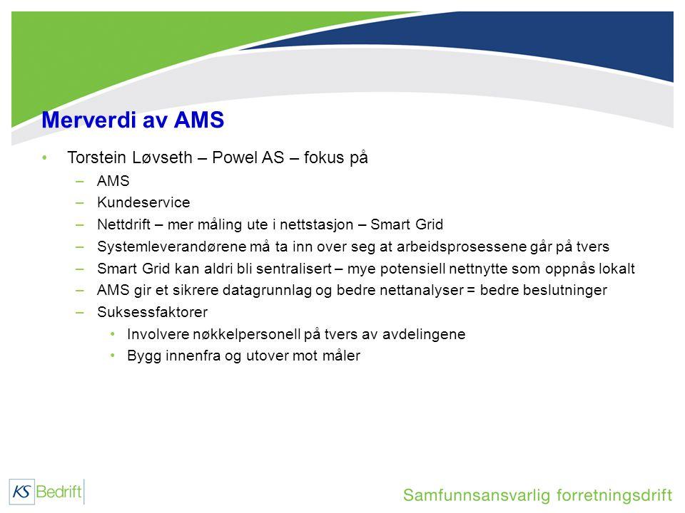 Merverdi av AMS •Torstein Løvseth – Powel AS – fokus på –AMS –Kundeservice –Nettdrift – mer måling ute i nettstasjon – Smart Grid –Systemleverandørene må ta inn over seg at arbeidsprosessene går på tvers –Smart Grid kan aldri bli sentralisert – mye potensiell nettnytte som oppnås lokalt –AMS gir et sikrere datagrunnlag og bedre nettanalyser = bedre beslutninger –Suksessfaktorer •Involvere nøkkelpersonell på tvers av avdelingene •Bygg innenfra og utover mot måler