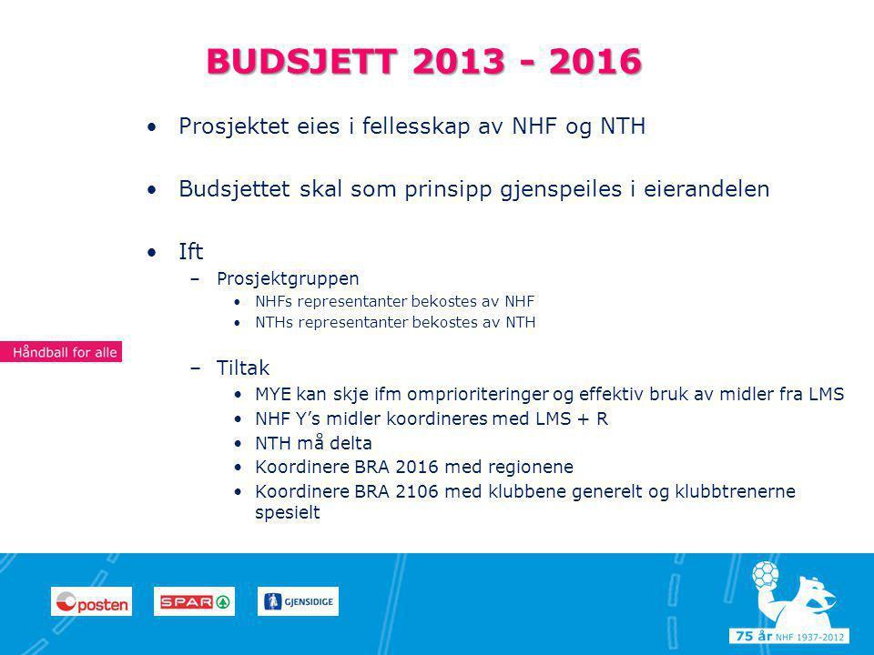 7 77 BUDSJETT 2013 - 2016 •Prosjektet eies i fellesskap av NHF og NTH •Budsjettet skal som prinsipp gjenspeiles i eierandelen •Ift –Prosjektgruppen •NHFs representanter bekostes av NHF •NTHs representanter bekostes av NTH –Tiltak •MYE kan skje ifm omprioriteringer og effektiv bruk av midler fra LMS •NHF Y's midler koordineres med LMS + R •NTH må delta •Koordinere BRA 2016 med regionene •Koordinere BRA 2106 med klubbene generelt og klubbtrenerne spesielt Begeistring Innsatsvilje Respekt Fair Play