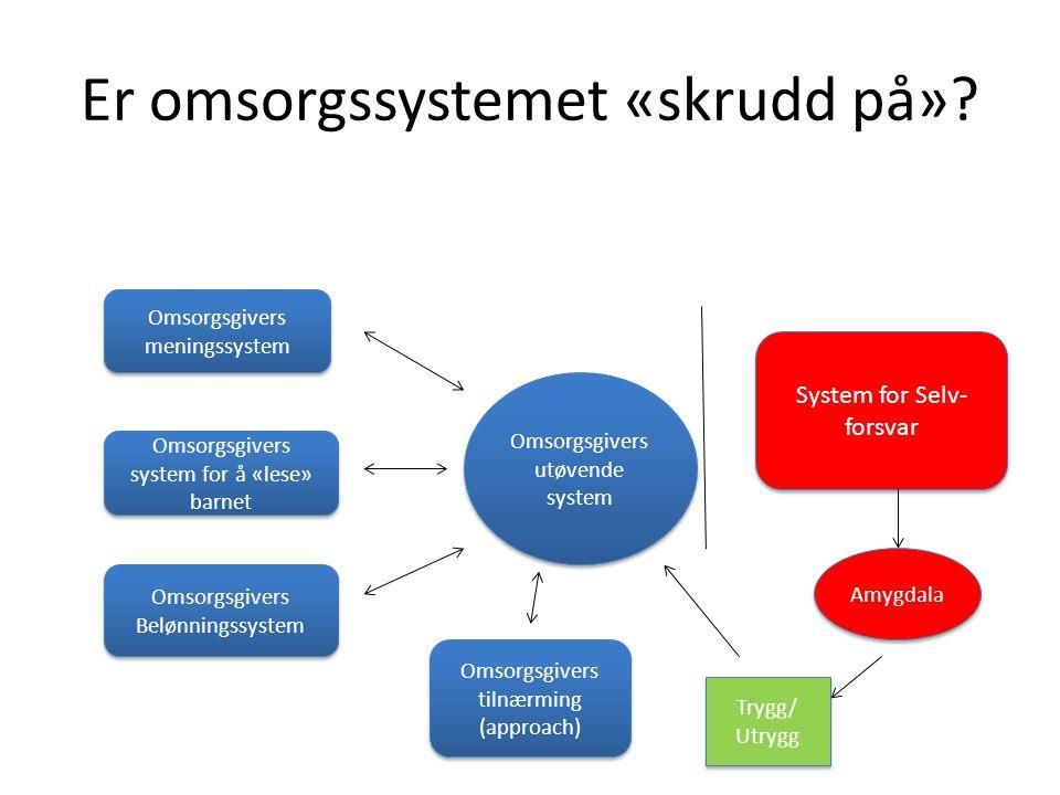Er omsorgssystemet «skrudd på»? Omsorgsgivers meningssystem Omsorgsgivers system for å «lese» barnet Omsorgsgivers Belønningssystem Omsorgsgivers tiln