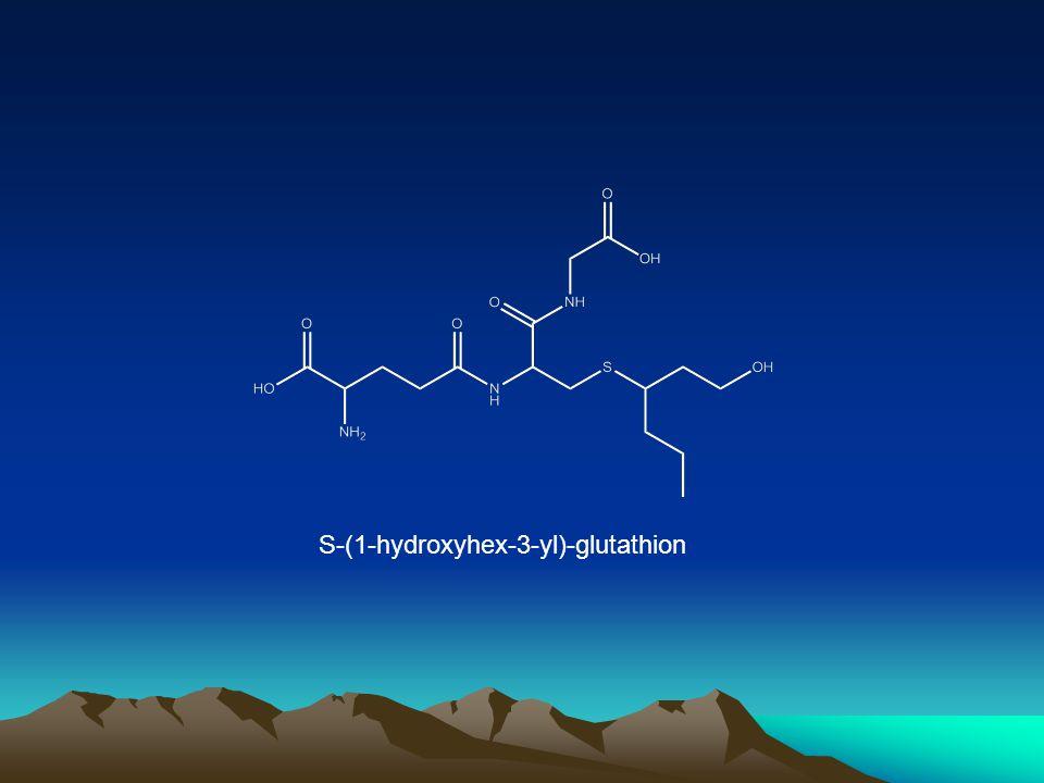 S-(1-hydroxyhex-3-yl)-glutathion