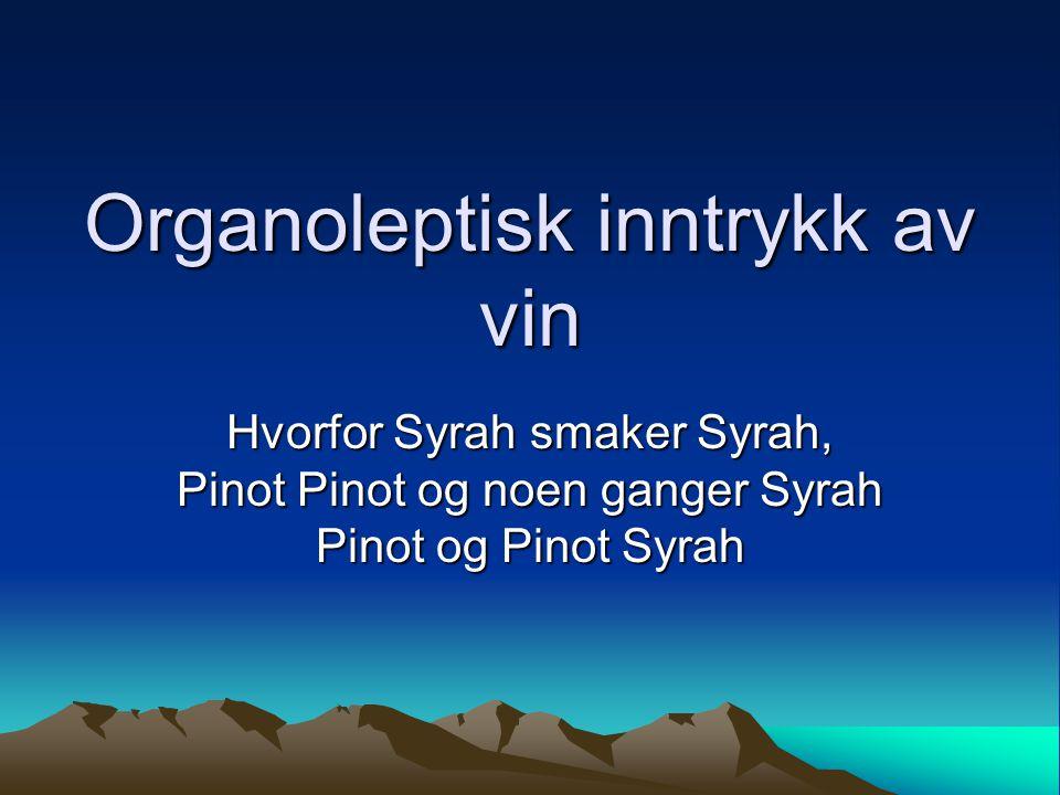 Organoleptisk inntrykk av vin Hvorfor Syrah smaker Syrah, Pinot Pinot og noen ganger Syrah Pinot og Pinot Syrah
