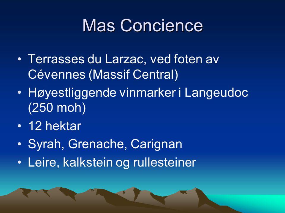 •Terrasses du Larzac, ved foten av Cévennes (Massif Central) •Høyestliggende vinmarker i Langeudoc (250 moh) •12 hektar •Syrah, Grenache, Carignan •Leire, kalkstein og rullesteiner