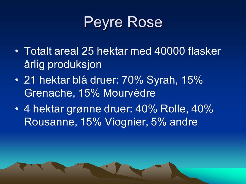 •Totalt areal 25 hektar med 40000 flasker årlig produksjon •21 hektar blå druer: 70% Syrah, 15% Grenache, 15% Mourvèdre •4 hektar grønne druer: 40% Ro