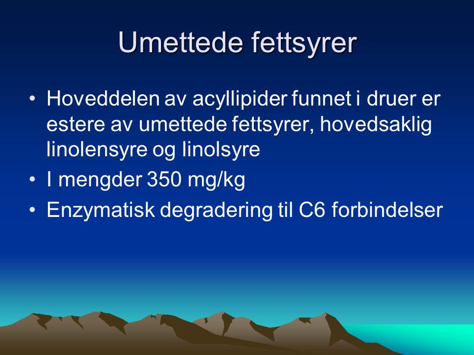 Umettede fettsyrer •Hoveddelen av acyllipider funnet i druer er estere av umettede fettsyrer, hovedsaklig linolensyre og linolsyre •I mengder 350 mg/kg •Enzymatisk degradering til C6 forbindelser