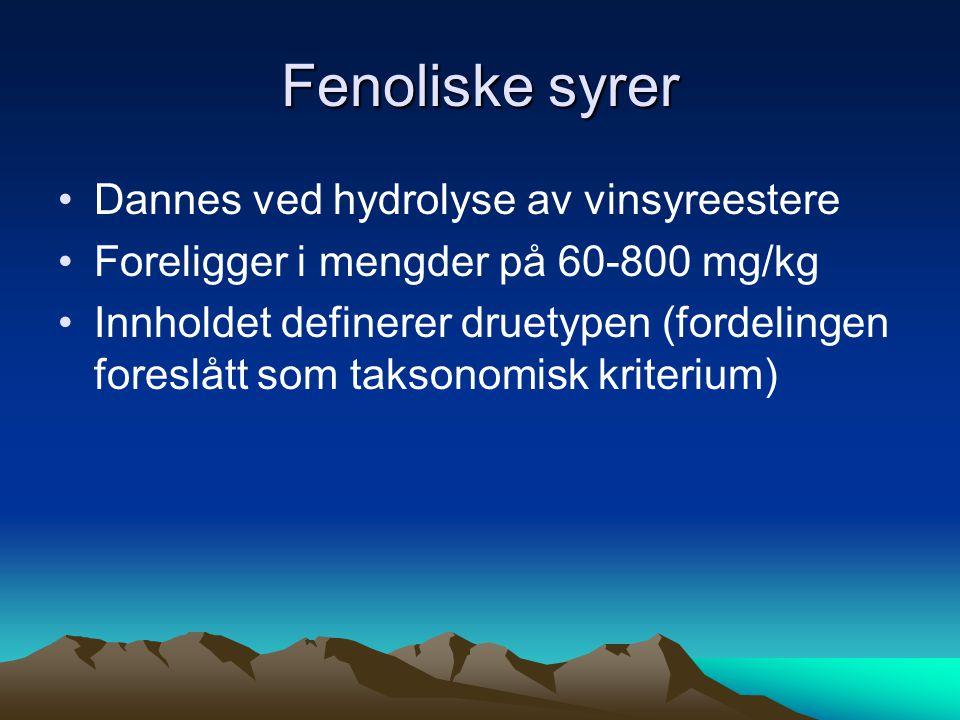 Fenoliske syrer •Dannes ved hydrolyse av vinsyreestere •Foreligger i mengder på 60-800 mg/kg •Innholdet definerer druetypen (fordelingen foreslått som taksonomisk kriterium)