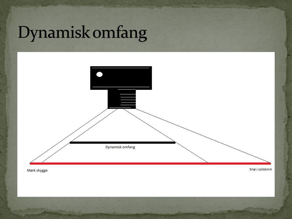  P – program  Programmert automatikk  Kan til en viss grad overstyre  Passer for enklere fotografering