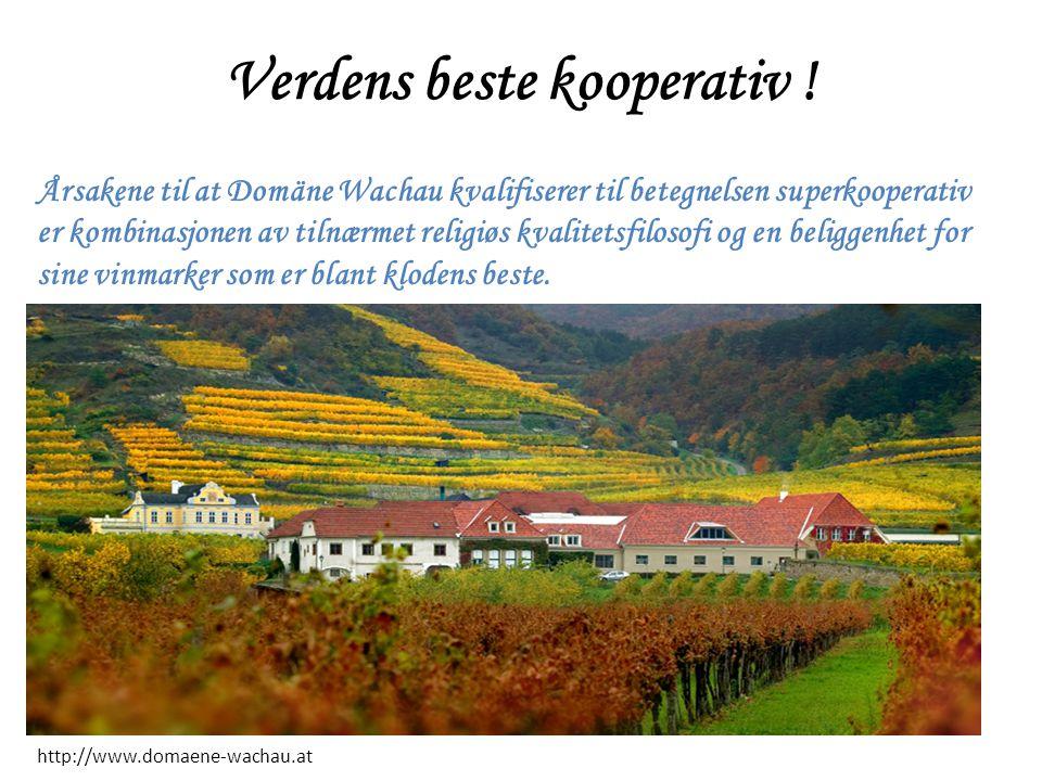 Verdens beste kooperativ ! Årsakene til at Domäne Wachau kvalifiserer til betegnelsen superkooperativ er kombinasjonen av tilnærmet religiøs kvalitets