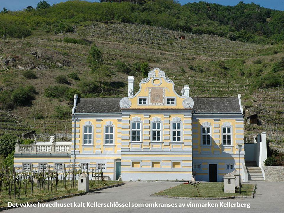 Det vakre hovedhuset kalt Kellerschlössel som omkranses av vinmarken Kellerberg