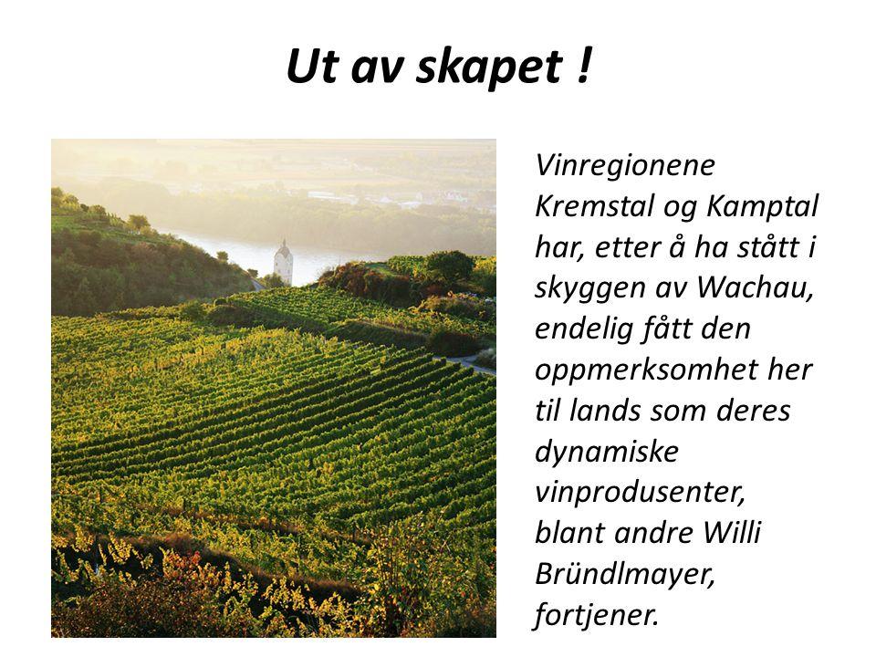 Ut av skapet ! Vinregionene Kremstal og Kamptal har, etter å ha stått i skyggen av Wachau, endelig fått den oppmerksomhet her til lands som deres dyna