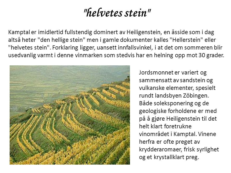 Kamptal er imidlertid fullstendig dominert av Heiligenstein, en åsside som i dag altså heter