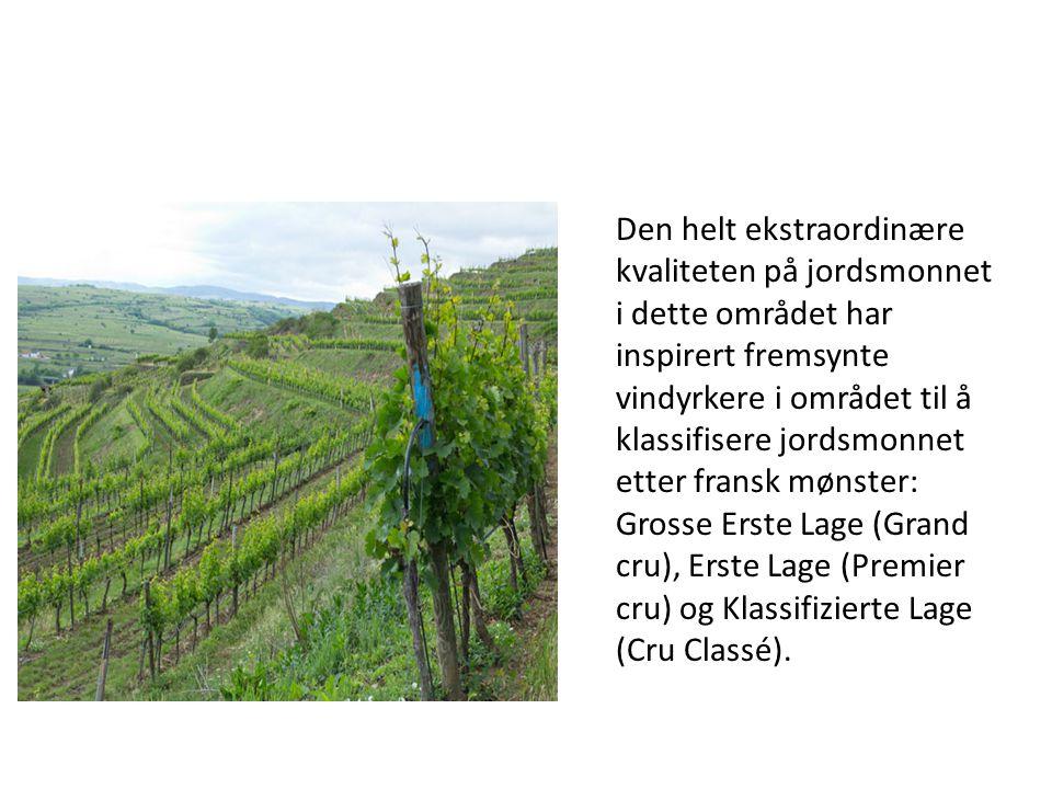 Den helt ekstraordinære kvaliteten på jordsmonnet i dette området har inspirert fremsynte vindyrkere i området til å klassifisere jordsmonnet etter fr