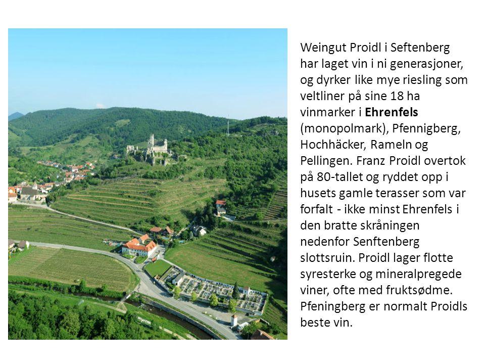 Weingut Proidl i Seftenberg har laget vin i ni generasjoner, og dyrker like mye riesling som veltliner på sine 18 ha vinmarker i Ehrenfels (monopolmar