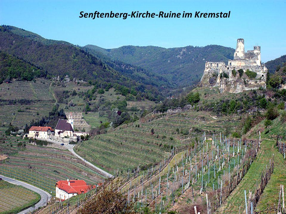 Senftenberg-Kirche-Ruine im Kremstal
