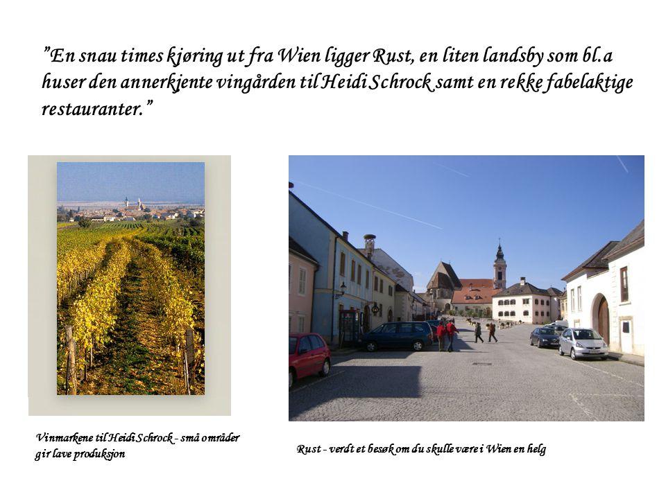"""Vinmarkene til Heidi Schrock - små områder gir lave produksjon Rust - verdt et besøk om du skulle være i Wien en helg """"En snau times kjøring ut fra Wi"""