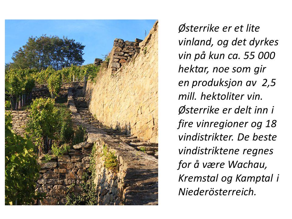 Østerrike er et lite vinland, og det dyrkes vin på kun ca. 55 000 hektar, noe som gir en produksjon av 2,5 mill. hektoliter vin. Østerrike er delt inn