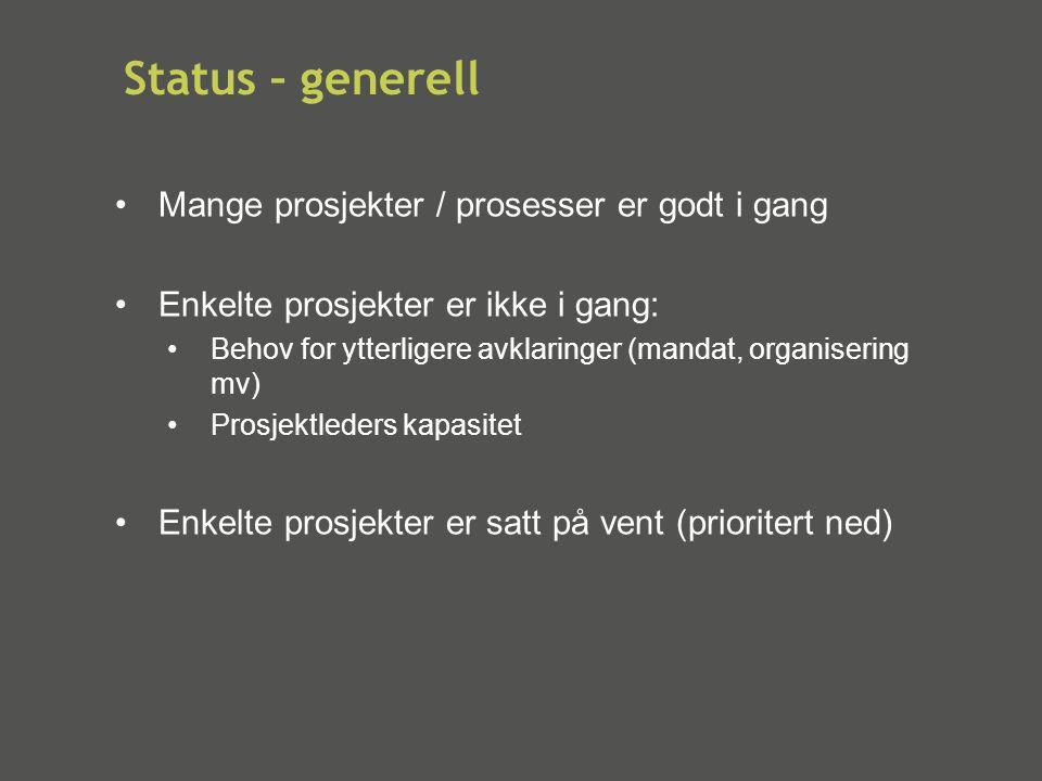 Status – generell •Mange prosjekter / prosesser er godt i gang •Enkelte prosjekter er ikke i gang: •Behov for ytterligere avklaringer (mandat, organis