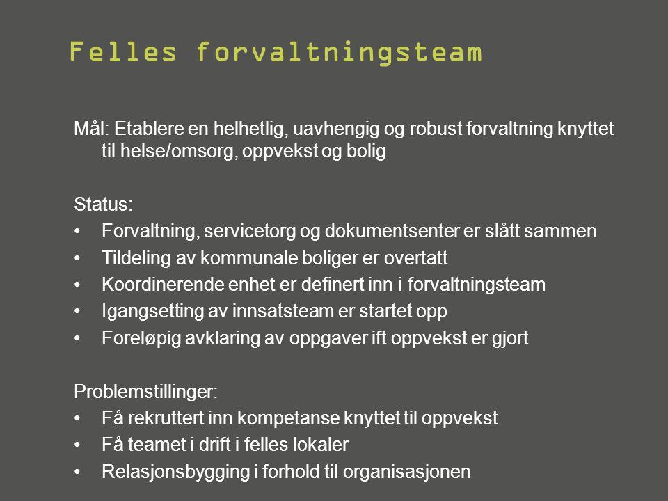 Felles forvaltningsteam Mål: Etablere en helhetlig, uavhengig og robust forvaltning knyttet til helse/omsorg, oppvekst og bolig Status: •Forvaltning,