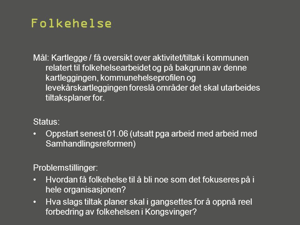 Folkehelse Mål: Kartlegge / få oversikt over aktivitet/tiltak i kommunen relatert til folkehelsearbeidet og på bakgrunn av denne kartleggingen, kommun