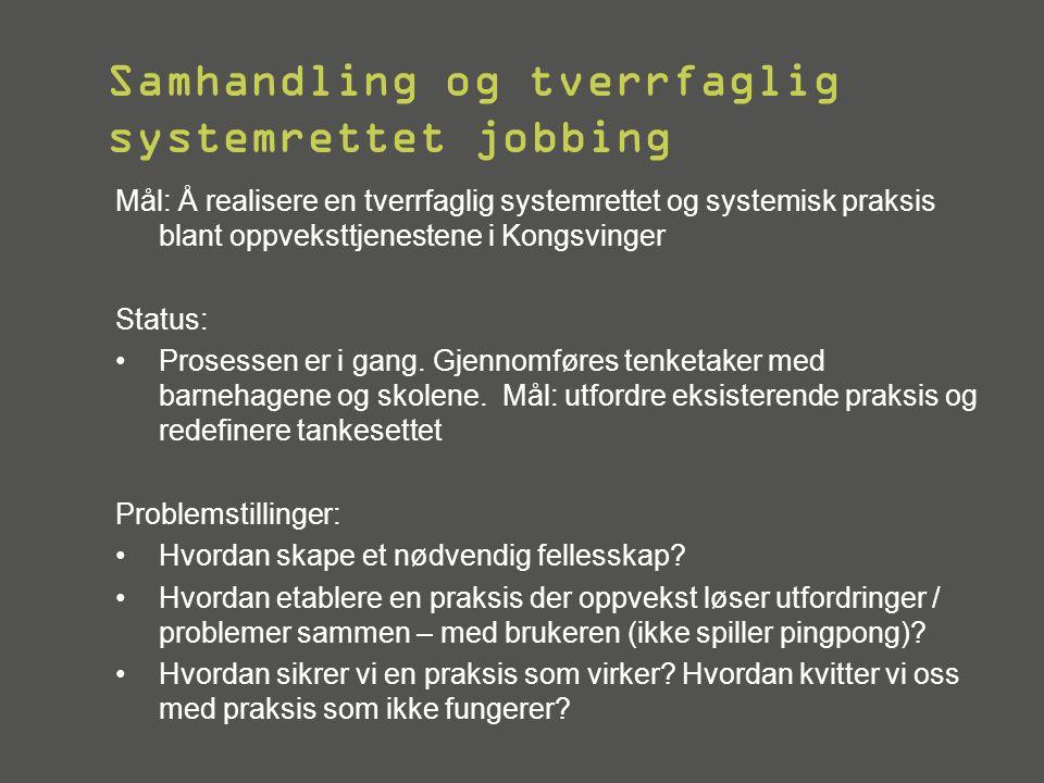 Samhandling og tverrfaglig systemrettet jobbing Mål: Å realisere en tverrfaglig systemrettet og systemisk praksis blant oppveksttjenestene i Kongsving