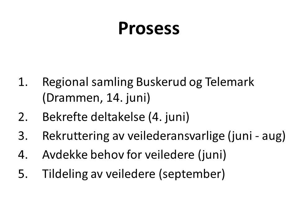 Prosess 1.Regional samling Buskerud og Telemark (Drammen, 14. juni) 2.Bekrefte deltakelse (4. juni) 3.Rekruttering av veilederansvarlige (juni - aug)