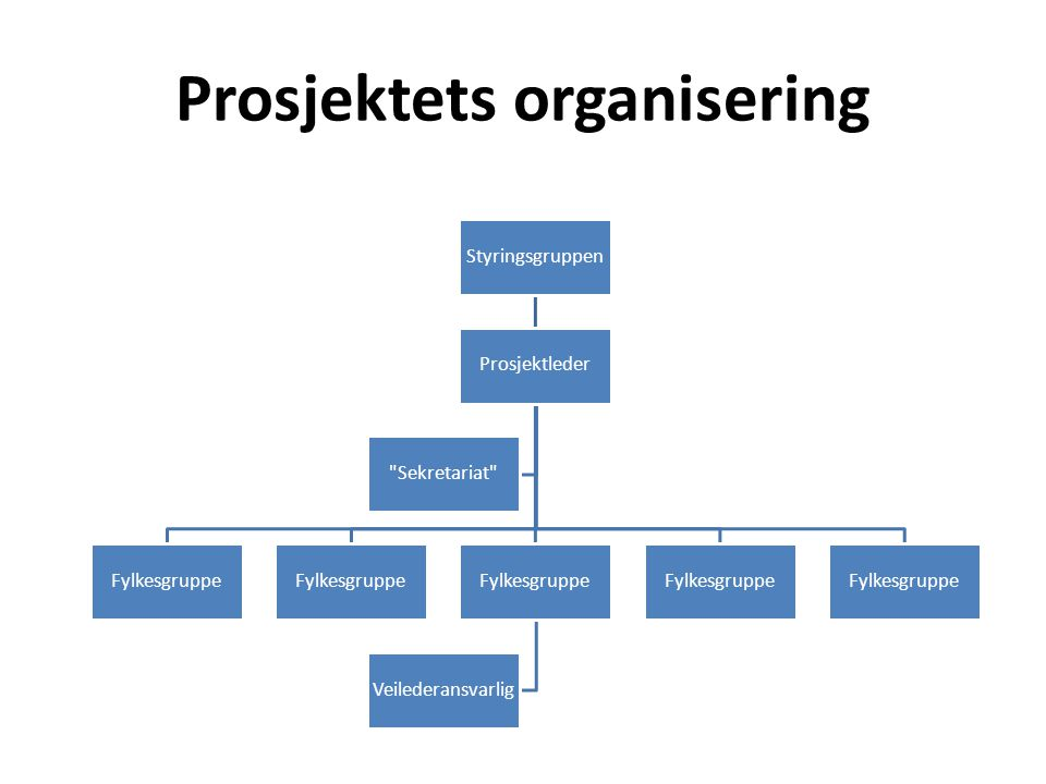 Prosjektets organisering Styringsgruppen Prosjektleder Fylkesgruppe Veilederansvarlig Fylkesgruppe Sekretariat