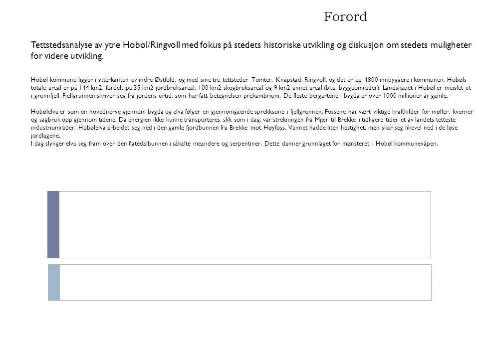 Forord Tettstedsanalyse av ytre Hobøl/Ringvoll med fokus på stedets historiske utvikling og diskusjon om stedets muligheter for videre utvikling. Hobø