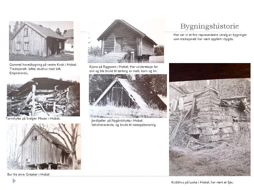 Bygningshistorie Her ser vi et fint representativt utvalg av bygninger som tradisjonelt har vært oppført i bygda. Kubbhus på Loska i Hobøl, har vært e