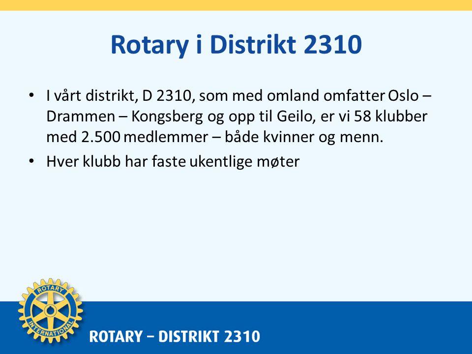 Hvorfor ønsker Rotary mangfold.