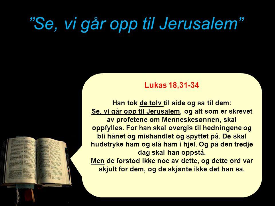 """""""Se, vi går opp til Jerusalem"""" Lukas 18,31-34 Han tok de tolv til side og sa til dem: Se, vi går opp til Jerusalem, og alt som er skrevet av profetene"""