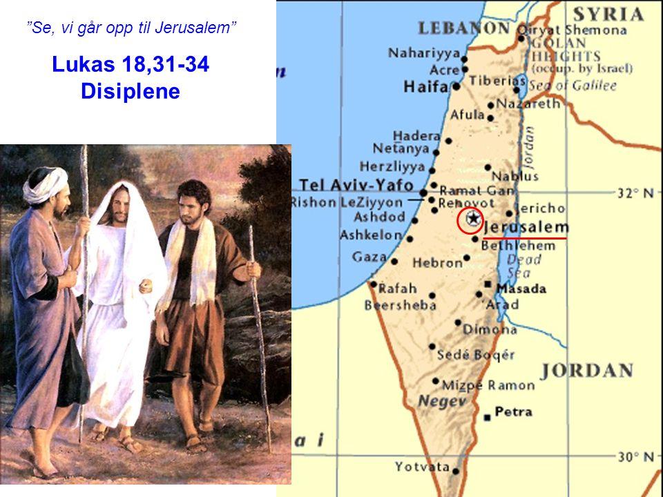 """""""Se, vi går opp til Jerusalem"""" Lukas 18,31-34 Disiplene"""