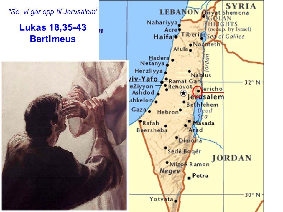 """Se, vi går opp til Jerusalem"" Lukas 18,35-43 Bartimeus"