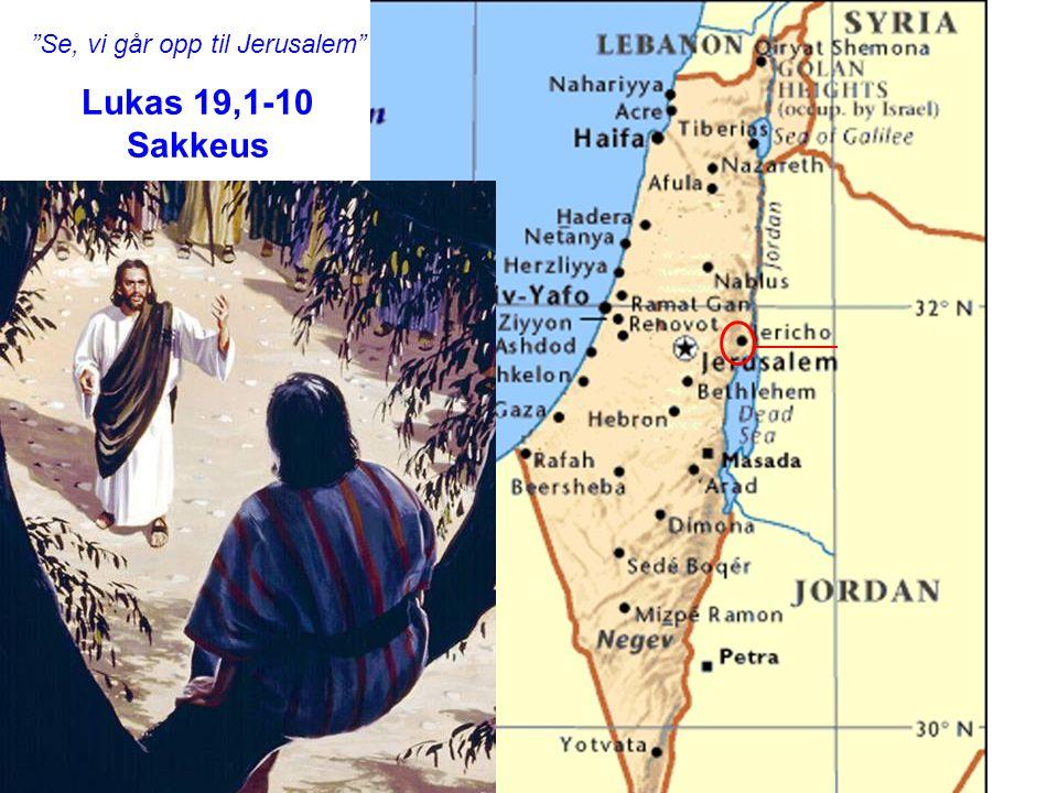 """""""Se, vi går opp til Jerusalem"""" Lukas 19,1-10 Sakkeus"""