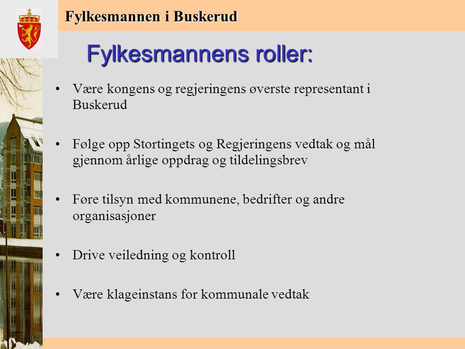 Fylkesmannen i Buskerud Bakgrunn: St.meld.nr.