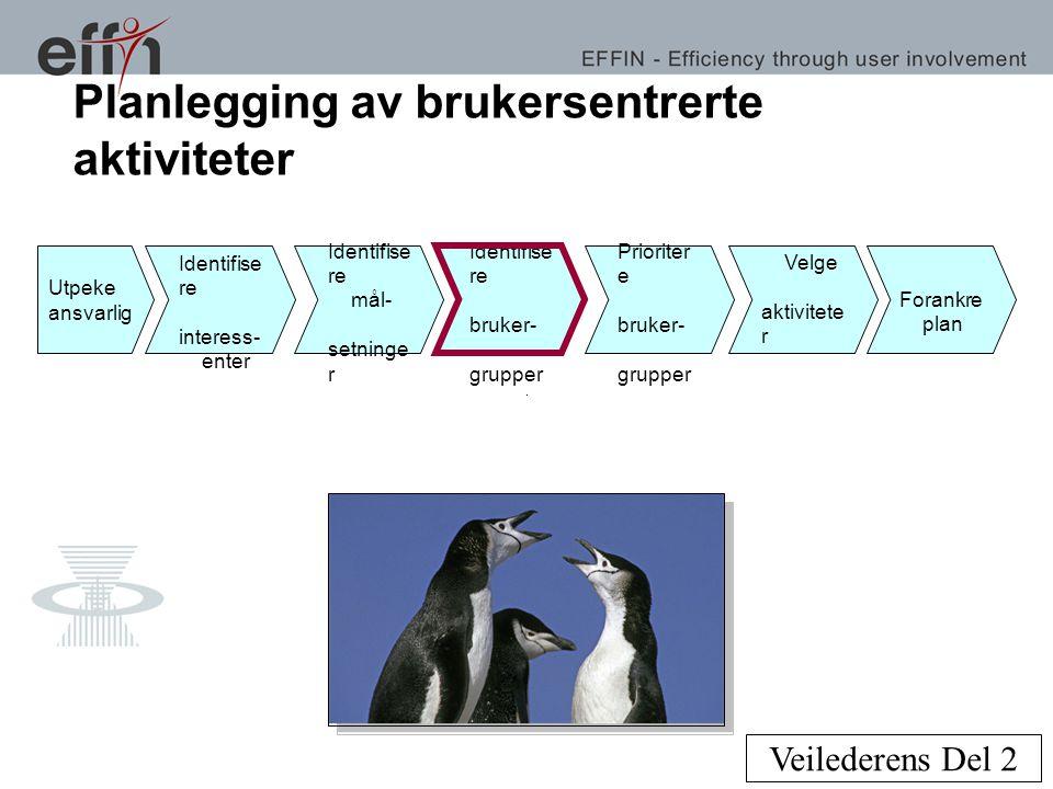 Planlegging av brukersentrerte aktiviteter Veilederens Del 2 Utpeke ansvarlig Identifise re interess- enter Identifise re bruker- grupper Prioriter e