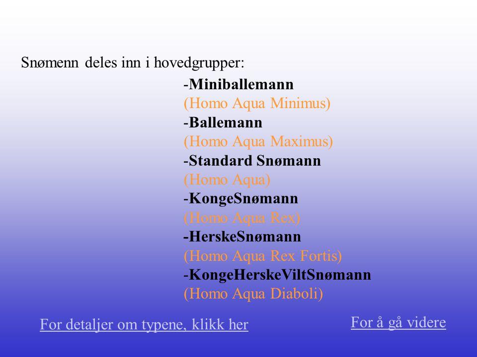 Miniballemann (Homo Aqua Minimus) Små aggressive snøballer opptil 15 cm.
