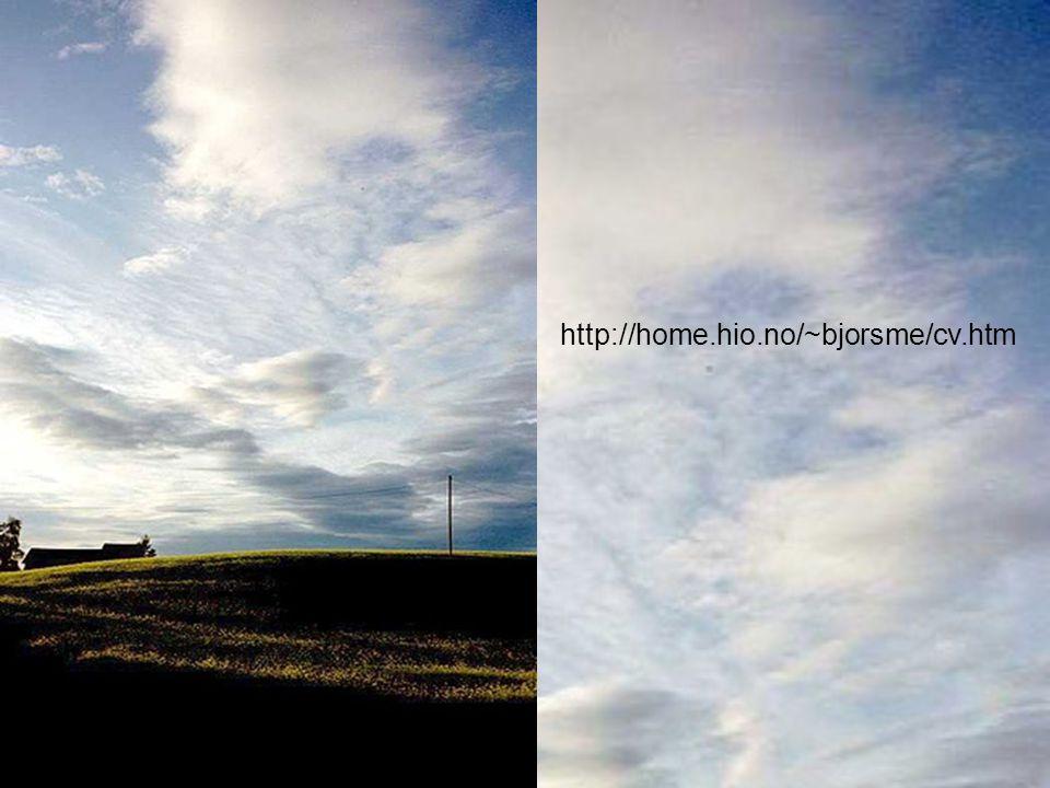 http://home.hio.no/~bjorsme/cv.htm