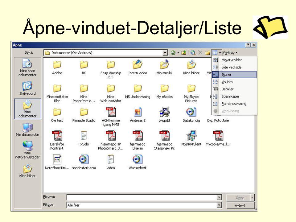 Åpne-vinduet-Detaljer/Liste