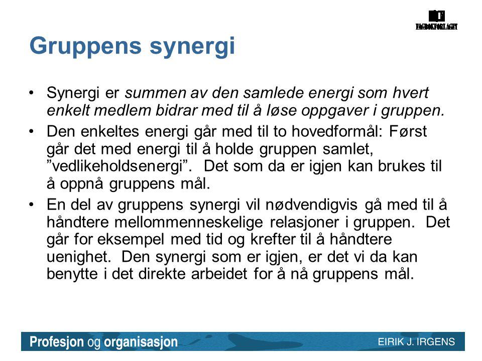 Gruppens synergi •Synergi er summen av den samlede energi som hvert enkelt medlem bidrar med til å løse oppgaver i gruppen. •Den enkeltes energi går m