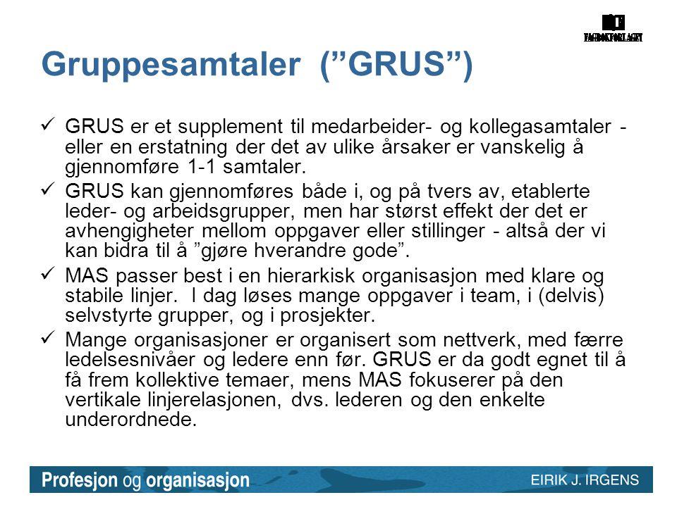 """Gruppesamtaler (""""GRUS"""")  GRUS er et supplement til medarbeider- og kollegasamtaler - eller en erstatning der det av ulike årsaker er vanskelig å gjen"""