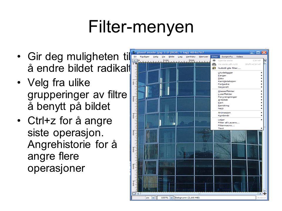 Filter-menyen •Gir deg muligheten til å endre bildet radikalt •Velg fra ulike grupperinger av filtre å benytt på bildet •Ctrl+z for å angre siste oper